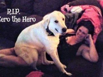 El perro de la familia, Zero, junto a su dueña