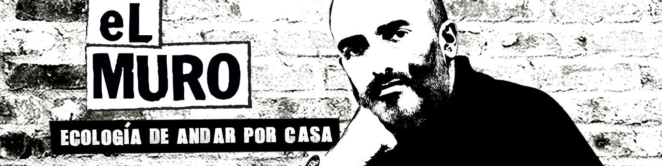 Miguel Aguado