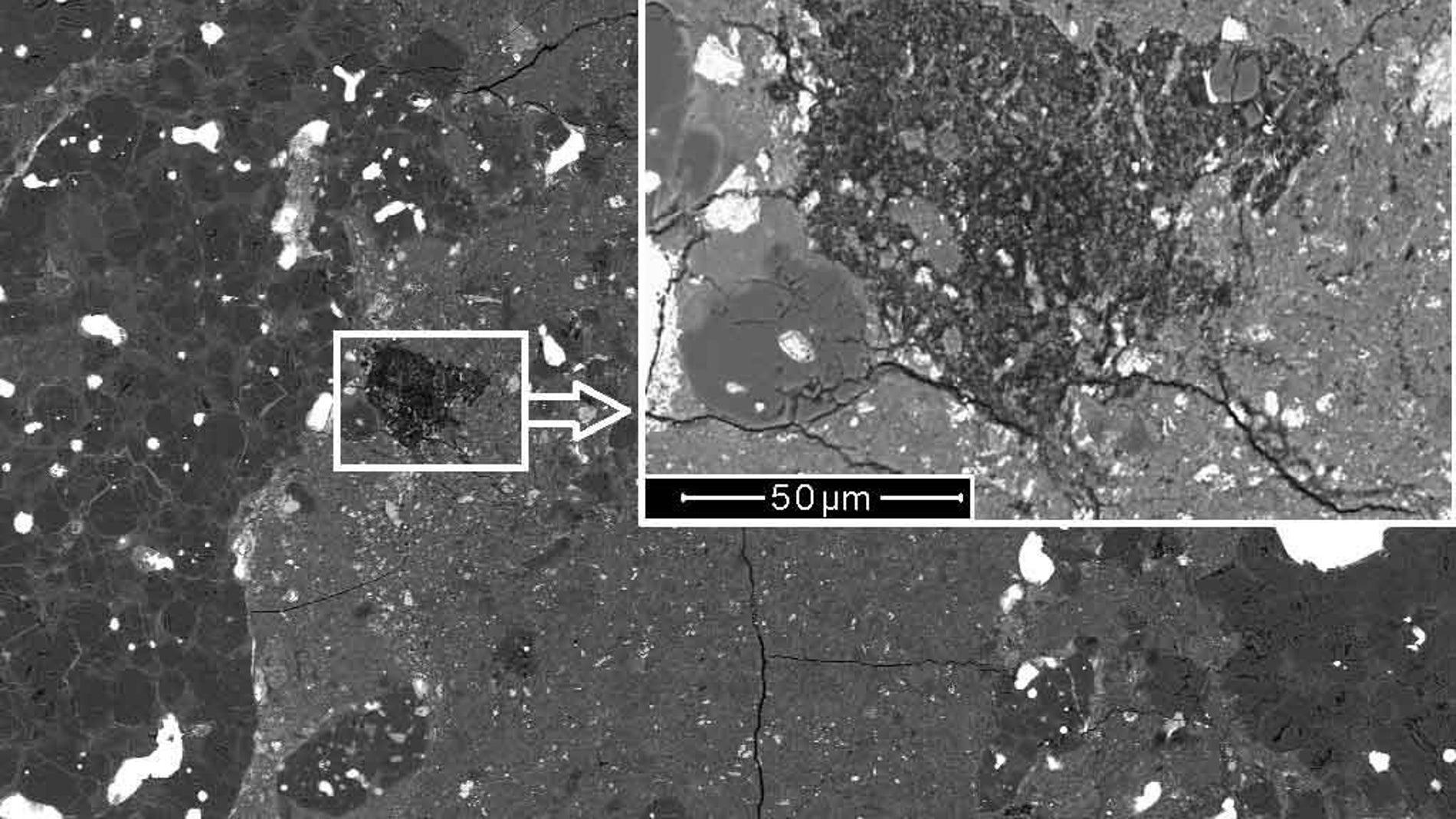 Descubren el fragmento de un cometa en el interior de un meteorito primitivo
