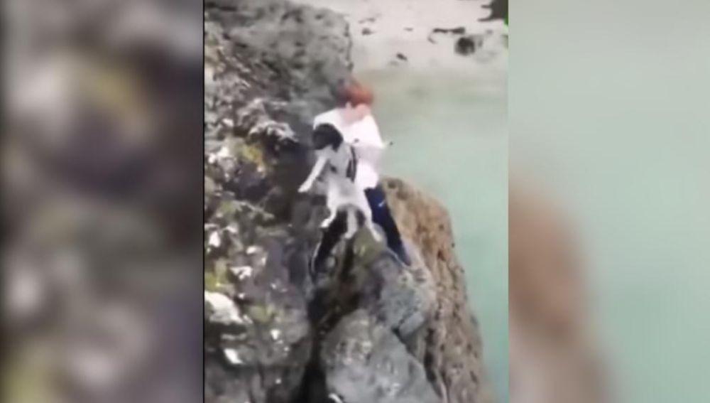 La policía lo busca por tirar a su perro a un acantilado