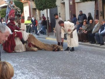Un camello de desmaya durante un desfile en Sedaví