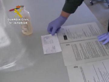 Detienen a 13 personas por administrar medicamentos irregulares a animales en Burgos