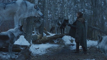Arya Stark se reencuentra con Nymeria.