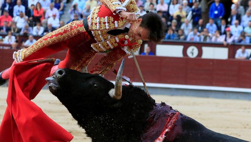 El torero Gonzalo Caballero tiene que ser operado de urgencia por una grave cogida en Las Ventas