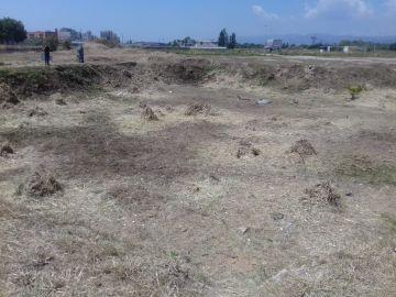 Agujero donde hallaron el cadáver de Janet Jumillas