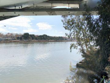 Inmediaciones de los Jardines del Guadalquivir en Sevilla