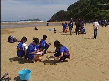 Más de 500 voluntarios limpian diez playas españolas