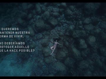 El nuevo anuncio de Estrella Damm sobre la protección del Mediterráneo que remueve conciencias