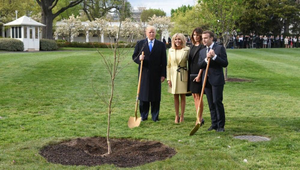 Trump, Macron y sus respectivas esposas plantando el roble