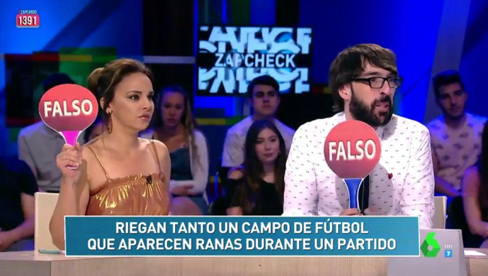 Aparecen ranas en un campo de fútbol tras regar mucho el césped y otras noticias del Zapckech de Cristina Pedroche