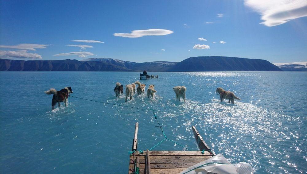 Los efectos del deshielo en Groenlandia