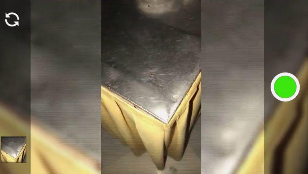Cucarachas corriendo en una de las mesas del comedor: así viven nuestros deportistas de alto rendimiento