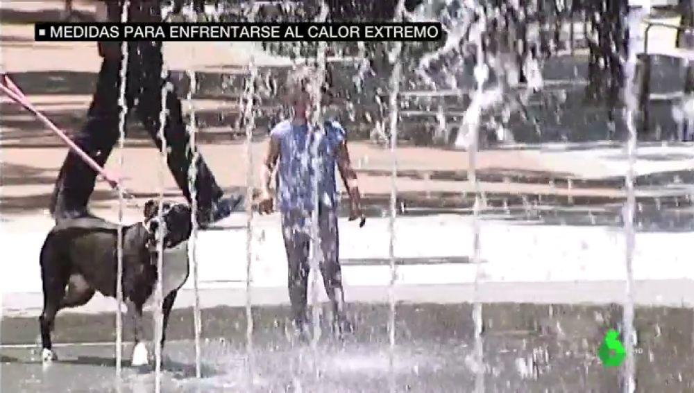 Piscina gratis para ancianos, toldos y dieta helada para animales: las medidas extraordinarias frente a la ola de calor