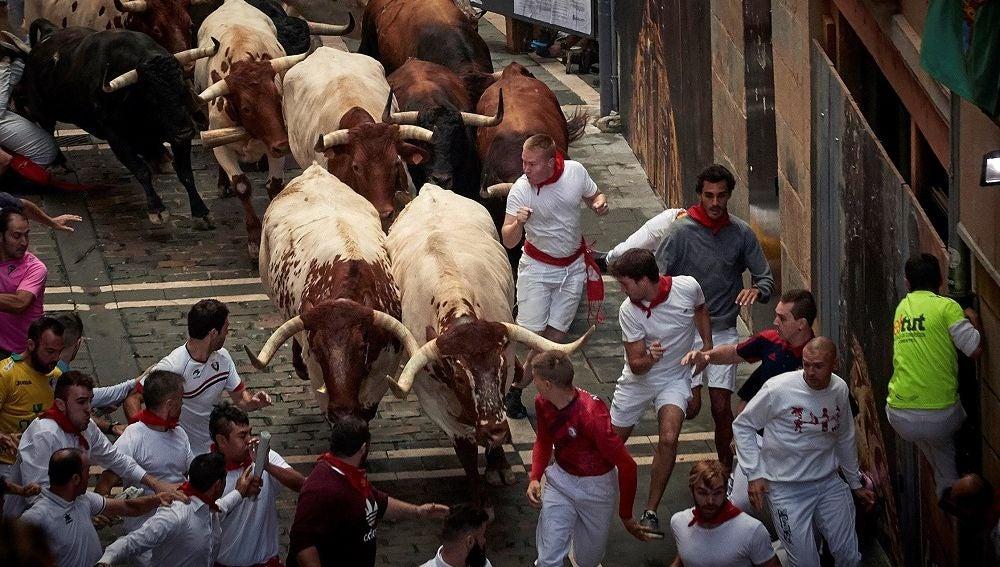 Los toros de la ganadería gaditana de Cebada Gago enfilan la calle Estafeta durante el segundo encierro de los Sanfermines 2019