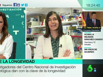 """María Blasco explica cómo la ciencia podría alargar la vida: """"Potenciamos la telomerasa en ratones y conseguimos prolongar su vida un 40%"""""""