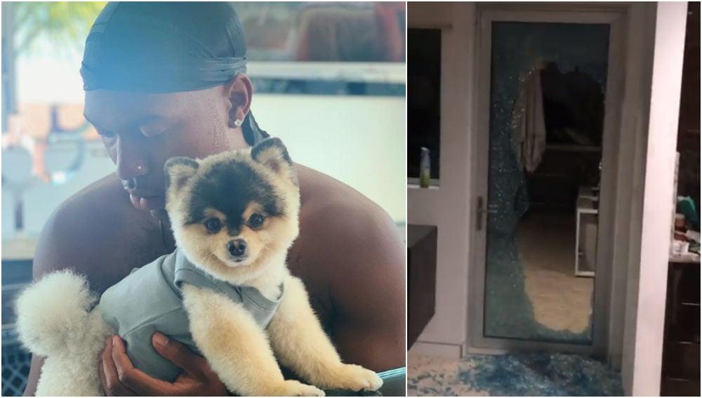 Sturridge denuncia el robo de su perro
