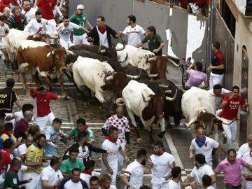 Los toros de la ganadería de Jandilla
