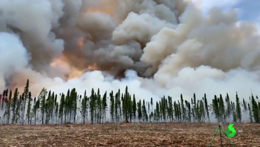 Incendios forestales sin precedentes en el Ártico