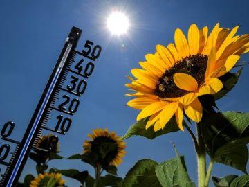 Vista de un termómetro que se eleva hasta los 39 grados