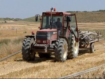 Agricultor trabajando bajo las altas temperaturas