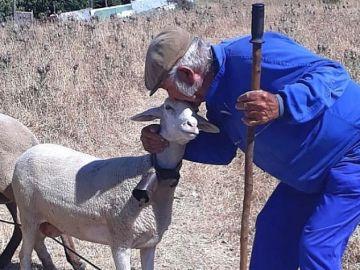 Guillermo Cano con una de sus ovejas.