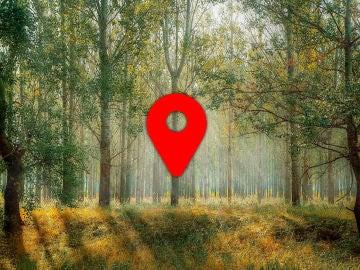 Ubicación foto Google Fotos