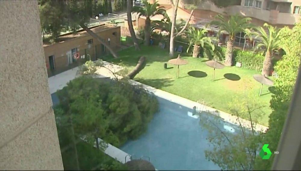 Un socorrista logra sacar a todos los bañistas de una piscina antes de que un árbol cayera sobre ellos