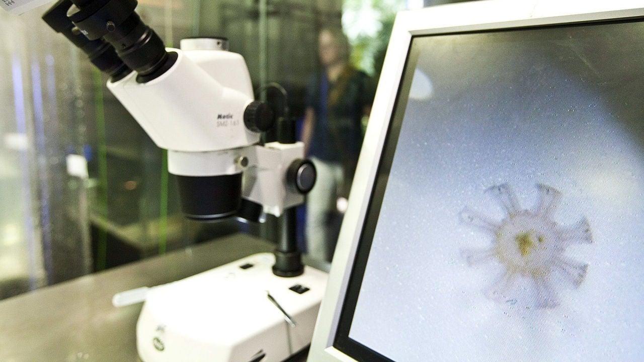 Vista de un microscopio en un laboratorio