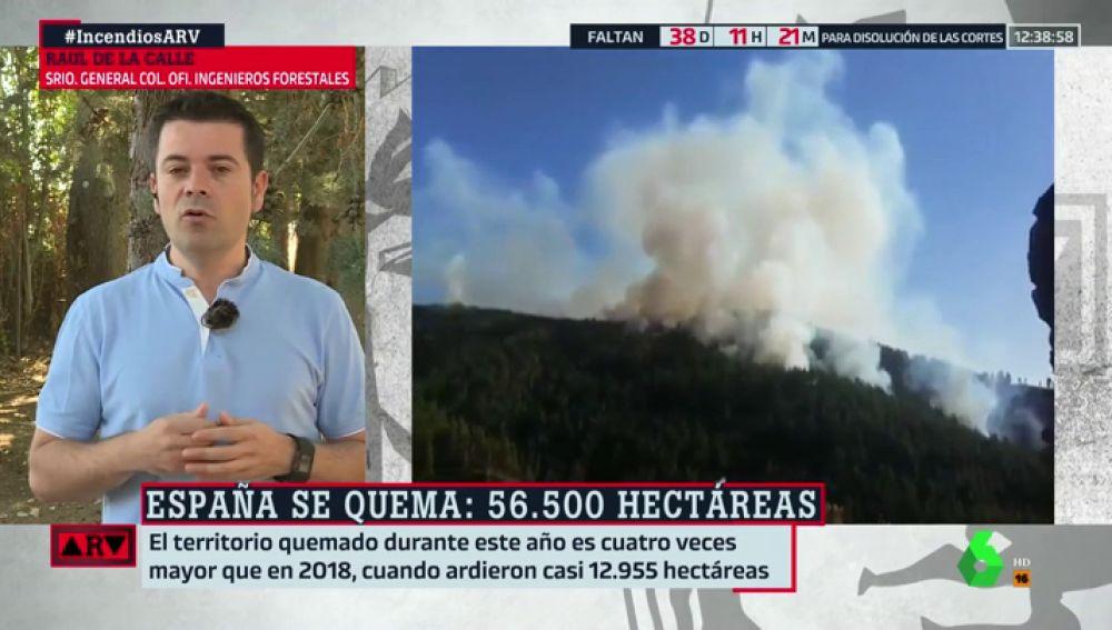 """Raúl de la Calle: """"Tenemos un problema muy grave de incendios por el cambio climático, la despoblación del medio rural y la falta de gestión"""""""