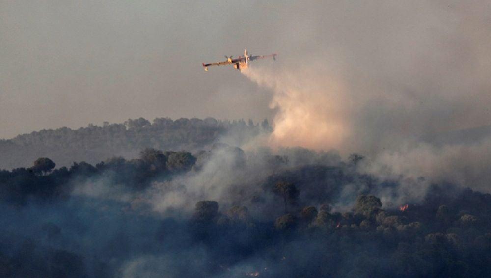 Incendio forestal en un paraje de la localidad sevillana de El Madroño