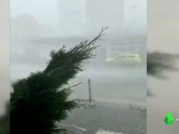 Imagen del súbito huracán que ha causado numerosos destrozos en Frrankfurt