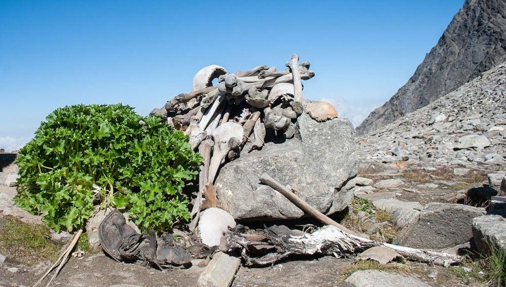 Los esqueletos del lago Roopkund incluyen migrantes mediterraneos