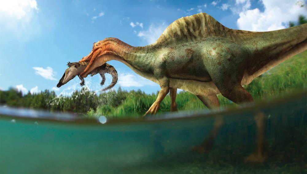 Vallibonavenatrix el primer dinosaurio espinosaurido de la peninsula iberica