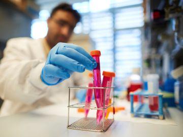 Descubren un fármaco que frena el cáncer de vejiga cuando iba a ser retirado