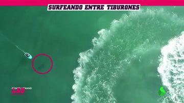 Sobrecogedor: Surfea sin saberlo sobre tiburones blancos... ¡y se cae al agua!