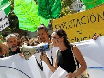 Protesta por los fuegos del Amazonas en España