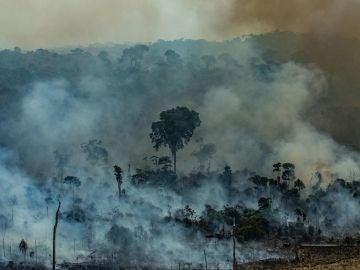 El humo cubre la Amazonia