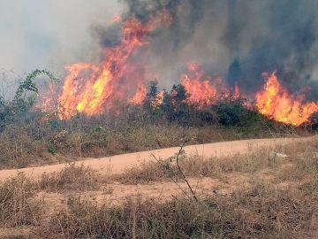 Uno de los incendios que azotan la amazonía brasileña, en Porto Velho