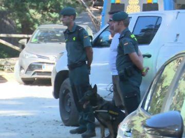 Xena, la perra de la Guardia Civil que encontró el cuerpo de Blanca Fernández Ochoa en su día libre