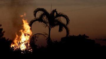 Incendio en la Amazonia brasileña