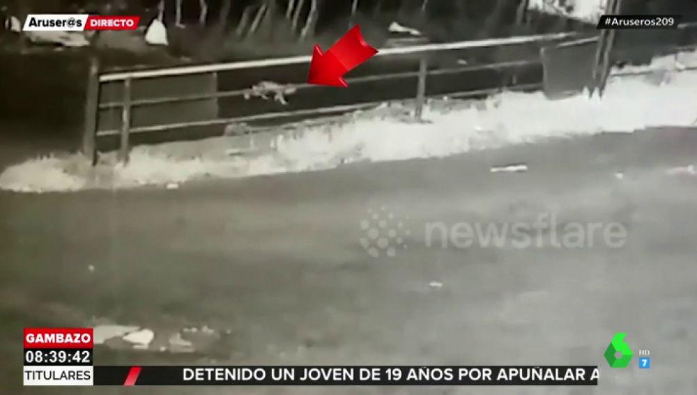 Una bebé cae de un coche y sus padres no se dan cuenta