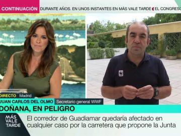 """El portavoz de WWF, contra la construcción de una carretera que una Cádiz y Huelva: """"Es un golpe mortal, un hachazo a Doñana"""""""