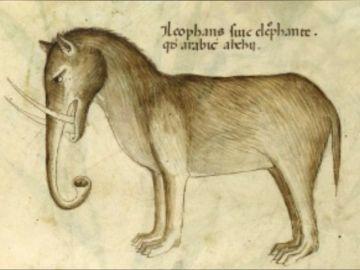 Elefantes con orejas de perro o cocodrilos convertidos en dragones: así imaginaban a los animales los artistas medievales
