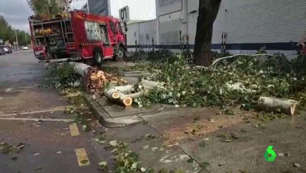 Destrozos en Mallorca a causa de la gota fría