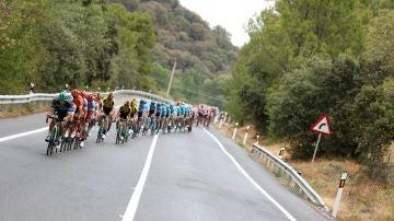 El pelotón de la Vuelta, durante la etapa 19