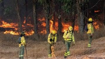Incendio en Paterna del Campo, en Huelva