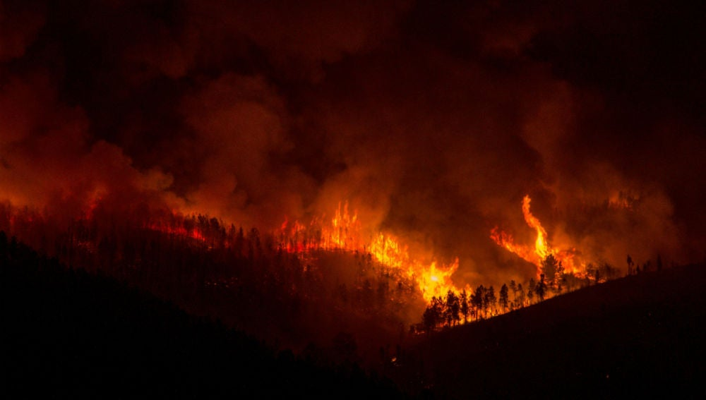 Incendio en A Gudiña, en Ourense