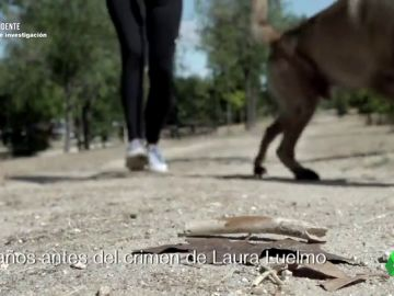 Montoya asaltó a una mujer diez años antes de asesinar a Luelmo: apuñaló al perro que la defendió