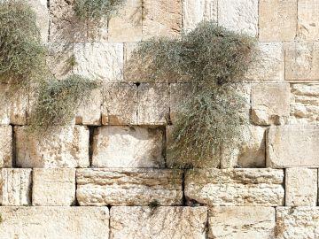 Muro de las Lamentaciones