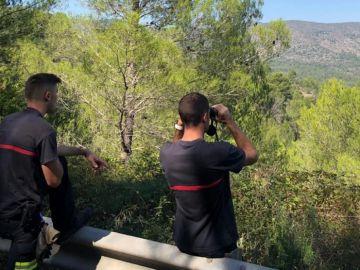 Bomberos en el servicio de búsqueda de los dos toros que se han escapado de una ganadería